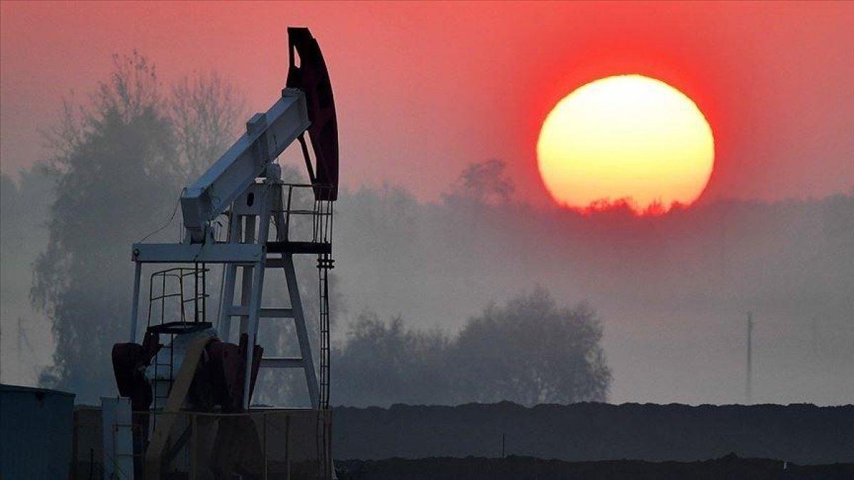Wood Mackenzie: Petrol fiyatları nisanda 70-75 dolara yükselecek